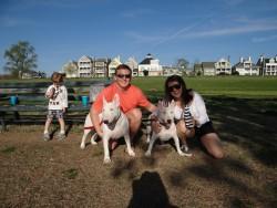 H & T w: pups